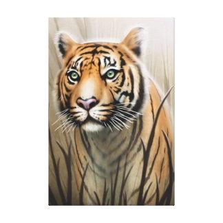 Toile de tigre