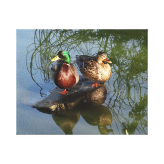 Toile des canards #2 de Mallard