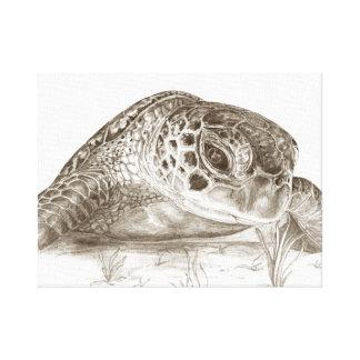 Toile Dessin de tortue de mer verte