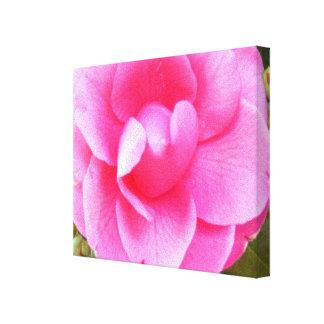 Toile - enveloppée - camélia rose foncé 1