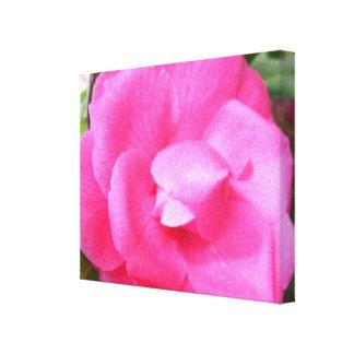 Toile - enveloppée - camélia rose foncé 2