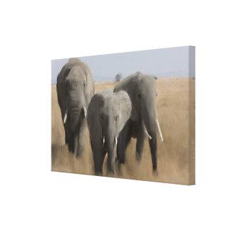 Toile Famille des éléphants