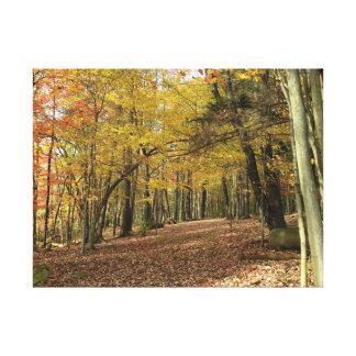 Toile Feuillage coloré Canfield Ohio d'automne de