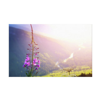 Toile Fireweed au parc national de glacier