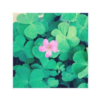 Toile Fleur rose de fleur sur des trèfles