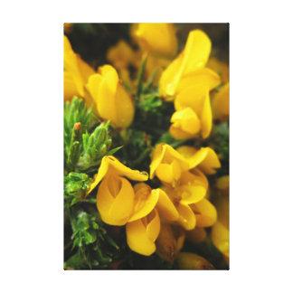 Toile Fleurs à feuillage persistant jaunes