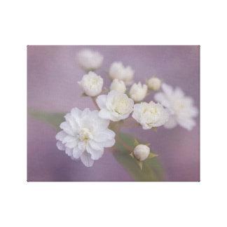 Toile Fleurs blanches sensibles avec l'arrière - plan