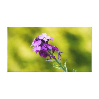 Toile Fleurs sauvages pourpres