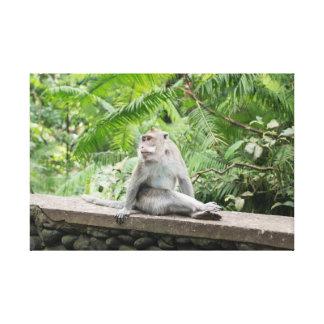Toile Forêt de singe
