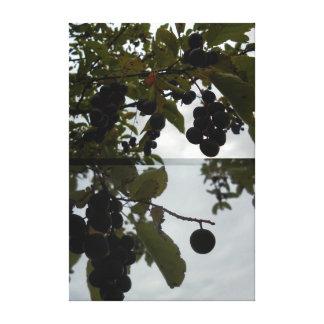 Toile Fruit