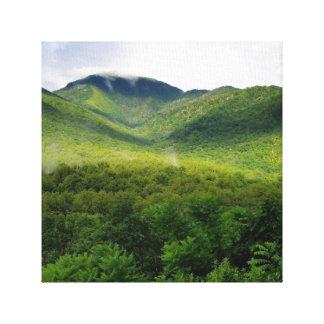 Toile Great Smoky Mountains