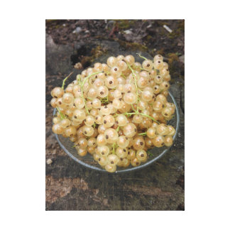 Toile Groseilles blanches organiques du jardin