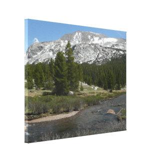Toile Haut parc du courant II Yosemite de montagne de
