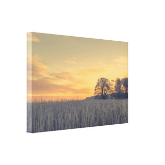 Toile Herbe congelée dans le lever de soleil