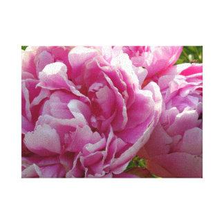 Toile Jardin rose de pivoine