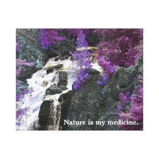 Toile La nature est ma médecine
