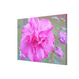 Toile Les roses indien de floraison Fuschia se sont