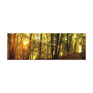 Toile Lever de soleil de forêt
