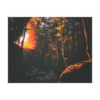 Toile Lever de soleil de la forêt   de la photographie  