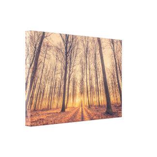 Toile Lever de soleil magique dans la forêt