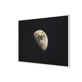 Toile Lune détaillée mignonne