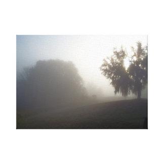 Toile matin brumeux tôt juste avant le lever de soleil