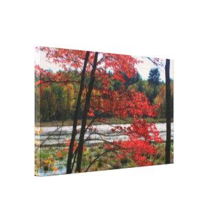 Toile Nature reculée de marais d'automne