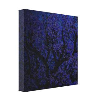 Toile Nuit de l'arbre de Jacaranda,