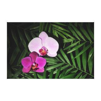 Toile Orchidées avec des palmettes