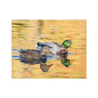 Toile Paires de canards