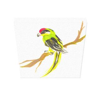 Toile Perroquet sur une branche. Peinture d'aquarelle.
