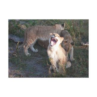 Toile petits animaux de lion taquinant