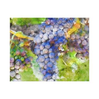 Toile Raisins de vin rouge sur la vigne