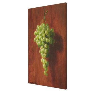 Toile Raisins verts