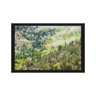 Toile Ressort sur le parc national d'Acadia de montagne