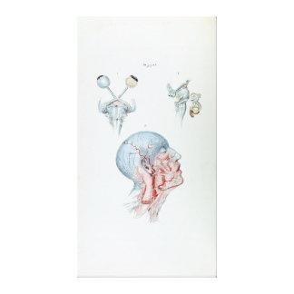 Toile Tête humaine et yeux d'anatomie vintage