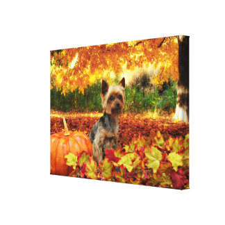 Toile Thanksgiving de chute - Tucker - Yorkie
