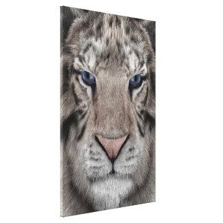 Toile Tigre blanc