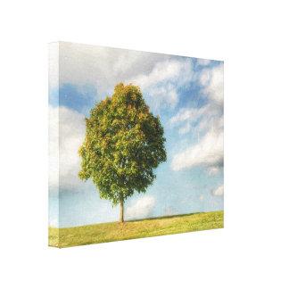 Toile Un arbre solitaire complètement de la vie avec un