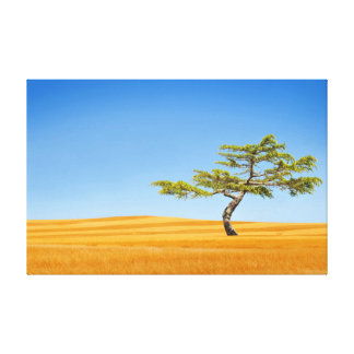 Toile Un arbre solitaire dans les domaines de l'or