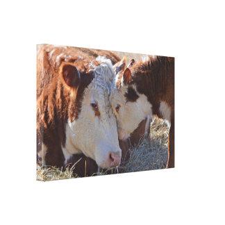 Toile Vaches câlines adorables