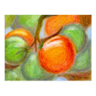 Tomates de Burpee, carte postale