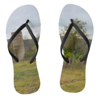 Tongs De silo toujours supports