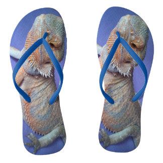 Tongs Le bleu de photo de dragon barbu le plus mignon