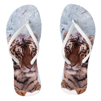 Tongs Tigre et neige
