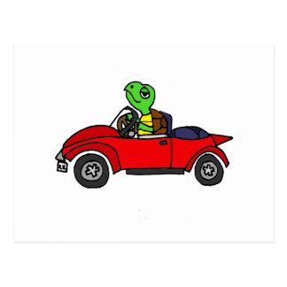 Tortue drôle conduisant la voiture convertible carte postale