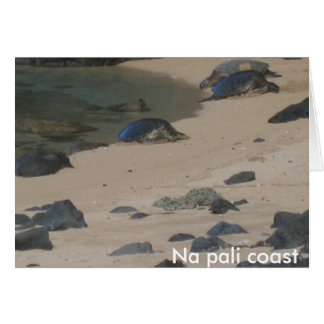 Tortues de mer sur le carte pour notes de Kaui