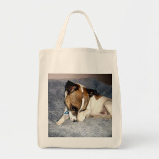 Tote Bag Fox_Terrier_So_Shy, _Grocery_Tote_Bag.