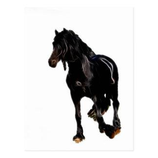 Tour soudain de chevaux carte postale