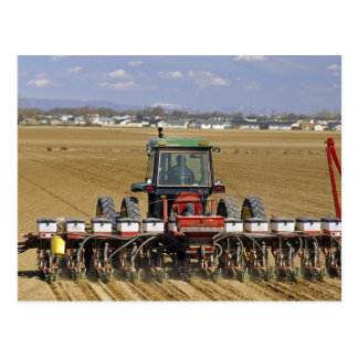 Tracteur tirant un planteur de maïs de graine cartes postales